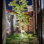 oglander garden h  7347 150x150 - Gallery